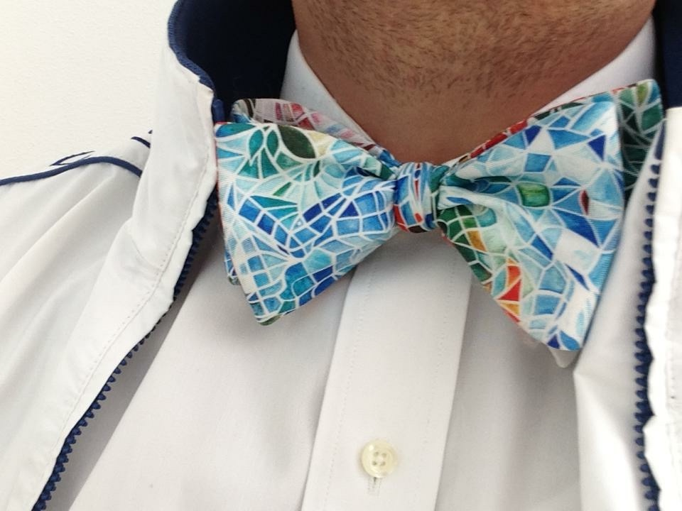 papillon Bow ties of Verm 143 KB.jpg